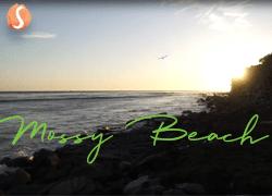 Mossy Beach